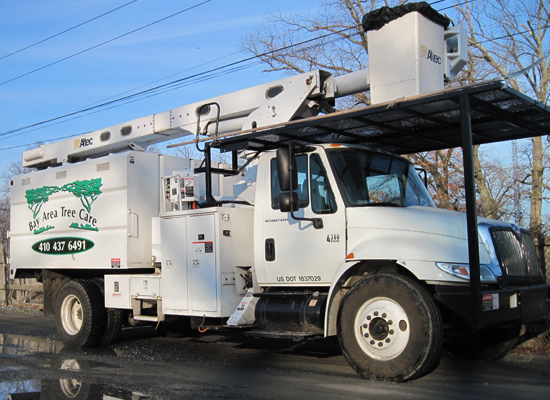 Pasadena Tree Service Equipment Gallery